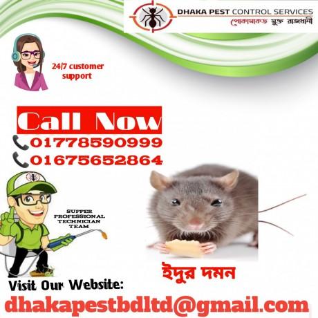 Dhaka Pest Control Services